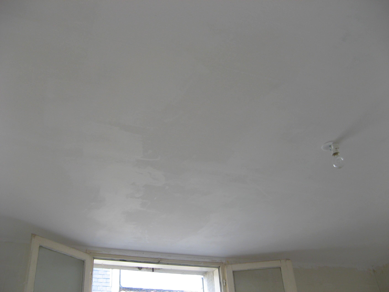 ma maison mes travaux peinture plafonds. Black Bedroom Furniture Sets. Home Design Ideas